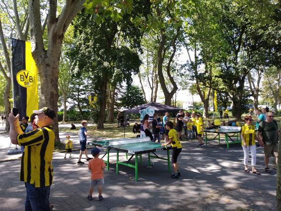 Borussia Dortmund Headis